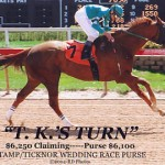 horse racing pictures
